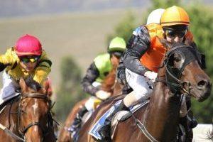 chevaux-de-courses-1024x606