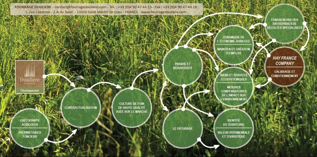 douliere hay france sustainable development